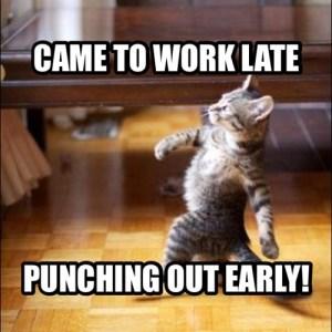 worker kitteh